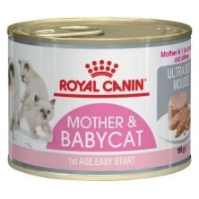 Royal Canin Babycat Feline Lata 195 Gr