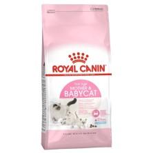 Royal Canin Mother & Babycat 400 Gr